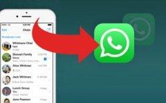 WhatsApp: onde as cópias de segurança são salvas?